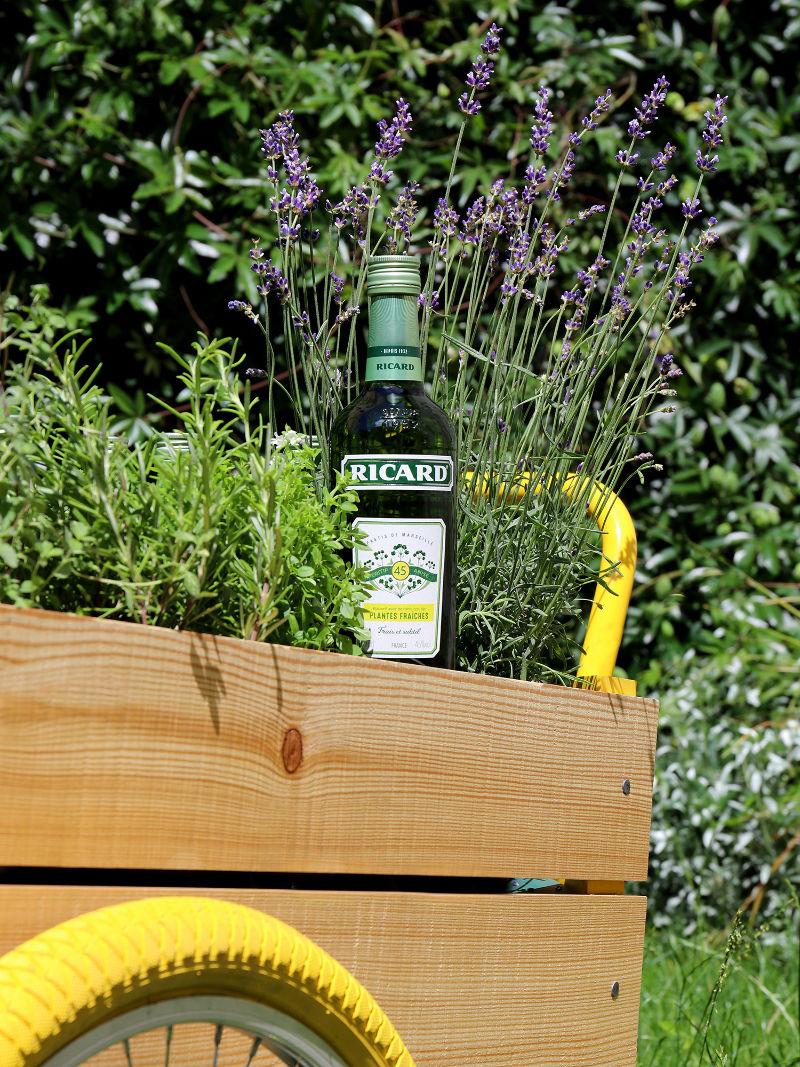 Ricard plantes fraîches pastis carriole