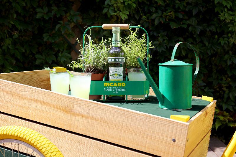 Ricard plantes fraîches pastis carriole apéritif table panier arrosoir